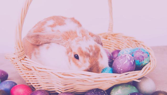 como a páscoa é celebrada na França